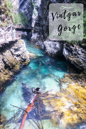 A walk in the Vintgar gorge is an easy and satisfying half-day trip from Bled.It is easy to imagine why this is one of the most popular natural features of Slovenia. #slovenia #vintgargorge #lakebledtovintgargorge #vintgargorgewalk