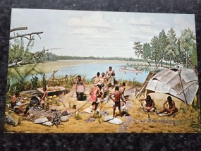 Vtg Postcard Uncirculated Unposted Early Chippewa Indian Wild Rice Processing