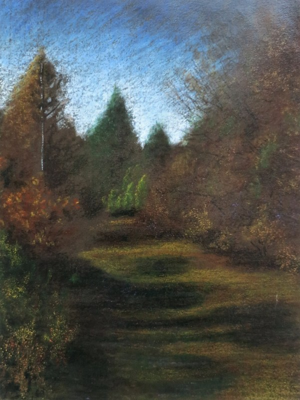 path in the woods of Vienna, pastels