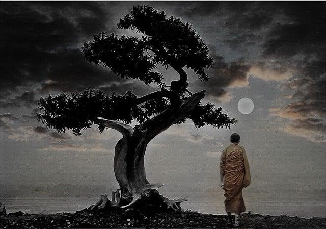 Soyez zen au bureau