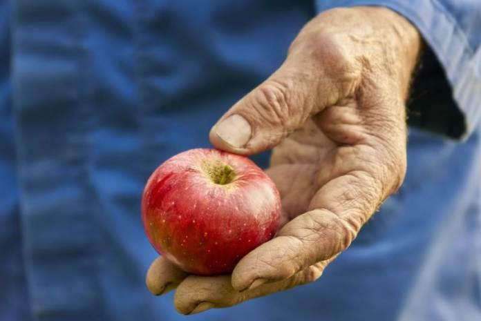 Jabuka u ruci - siromaštvo