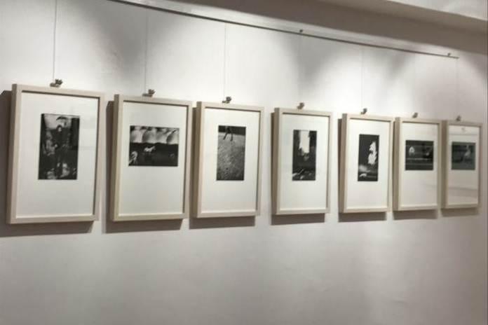 U Slovenskom domu otvorena izložba fotografija samozatajnog fotografa Stanka Vrtovca