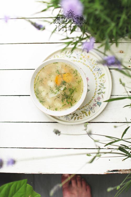zupa-z-mlodych-warzyw-3