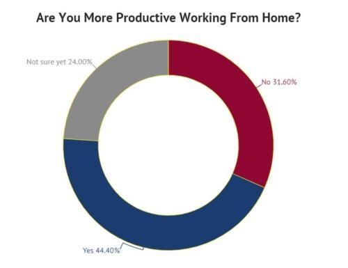 Половина американских рабочих будут работать из дома навсегда 3
