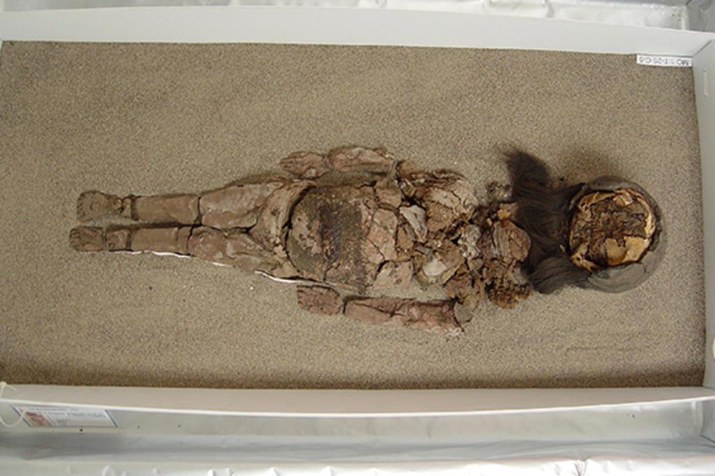 Mudanças climáticas ameaçam preservação de múmias Vivien Standen/Divulgação