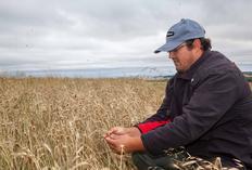 Especialistas alertam que El Niño pode ser o mais forte de todos os tempos Douglas Beutinger Rychescki/Especial