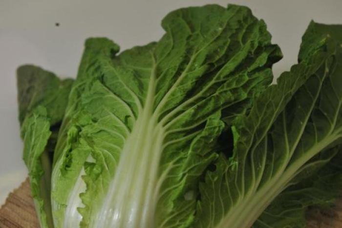 Vegetais possuem minerais, vitaminas e fibras