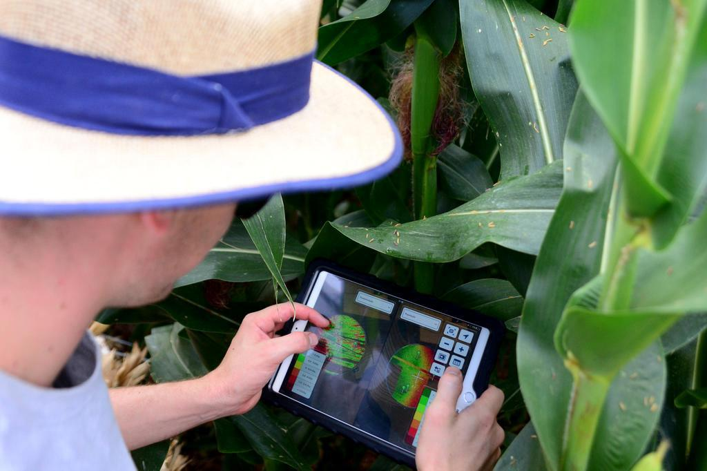Promessa de maior produtividade com a agricultura digital Diogo Zanatta/Especial