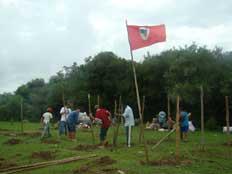 Ocupação em Jaguarão é considerada 13º acampamento do MST no RS Lorena Telis/Jornal Meridional, especial /