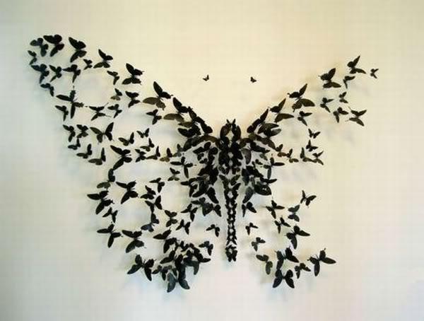 diagramă opțiune fluture)