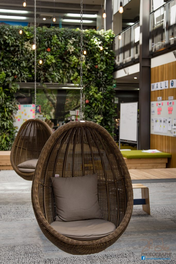Trade Me Auckland Office - Hanging Basket Chairs
