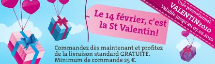 Valentine days code coupon