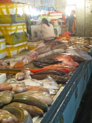 Went to a fish market in Sanya to pick out something for lunch