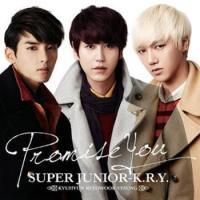 [Lirik] Promise You By Super Junior KRY
