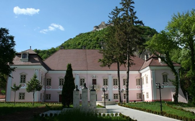 palatul magna curia