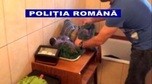 IPJ Galati (3)