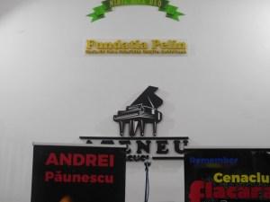 Andrei Paunescu Tecuci (3)