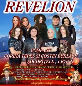 revelion Tecuci