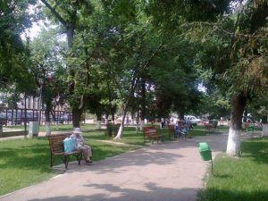 parc1