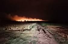 Incendiu de proporții într-o cultură de grâu de pe raza localității Brânceni