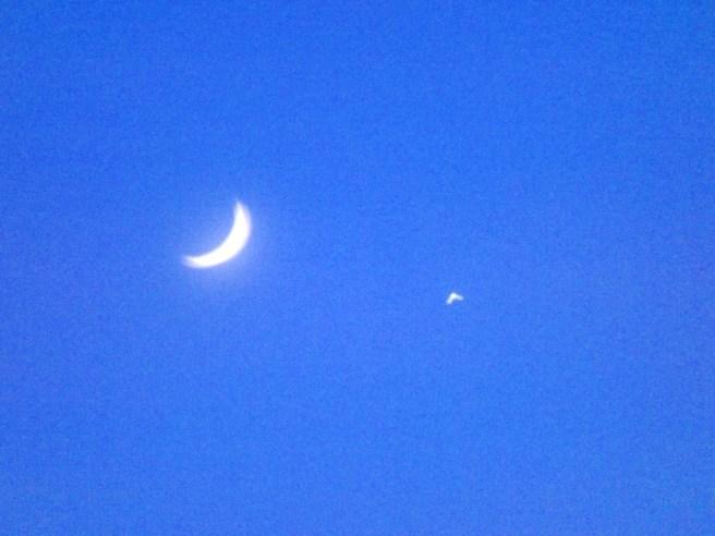 moon and star zicatela