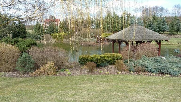 12910655_1031948276874035_232991074_n Ogród naturalistyczny w Górznie - film w jakości 4k
