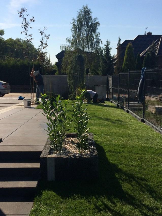img_7039 Budowa ogrodu wŁochowie - etap I