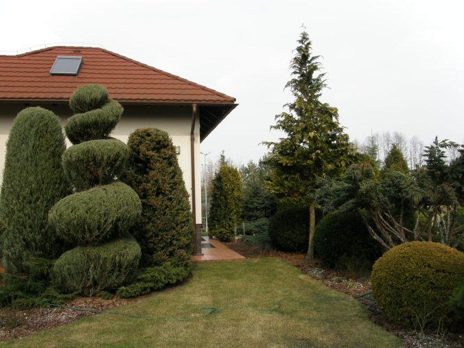 p3210043 Ogród naturalistyczny w Górznie - film w jakości 4k