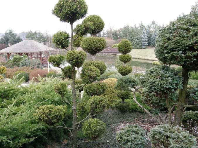 p3210063 Ogród naturalistyczny w Górznie - film w jakości 4k