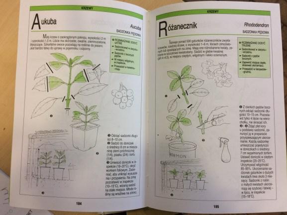 1-1 Polecana literatura na temat rozmnażania drzew i krzewów