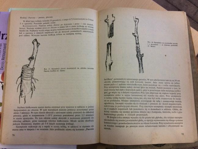 2-1 Polecana literatura na temat rozmnażania drzew i krzewów
