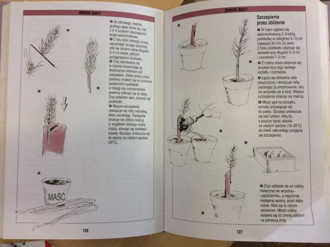3-1 Polecana literatura natemat rozmnażania drzew ikrzewów