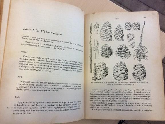 4-1 Polecana literatura na temat rozmnażania drzew i krzewów