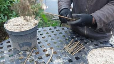 dsc00233 Warsztaty z rozmnażania roślin