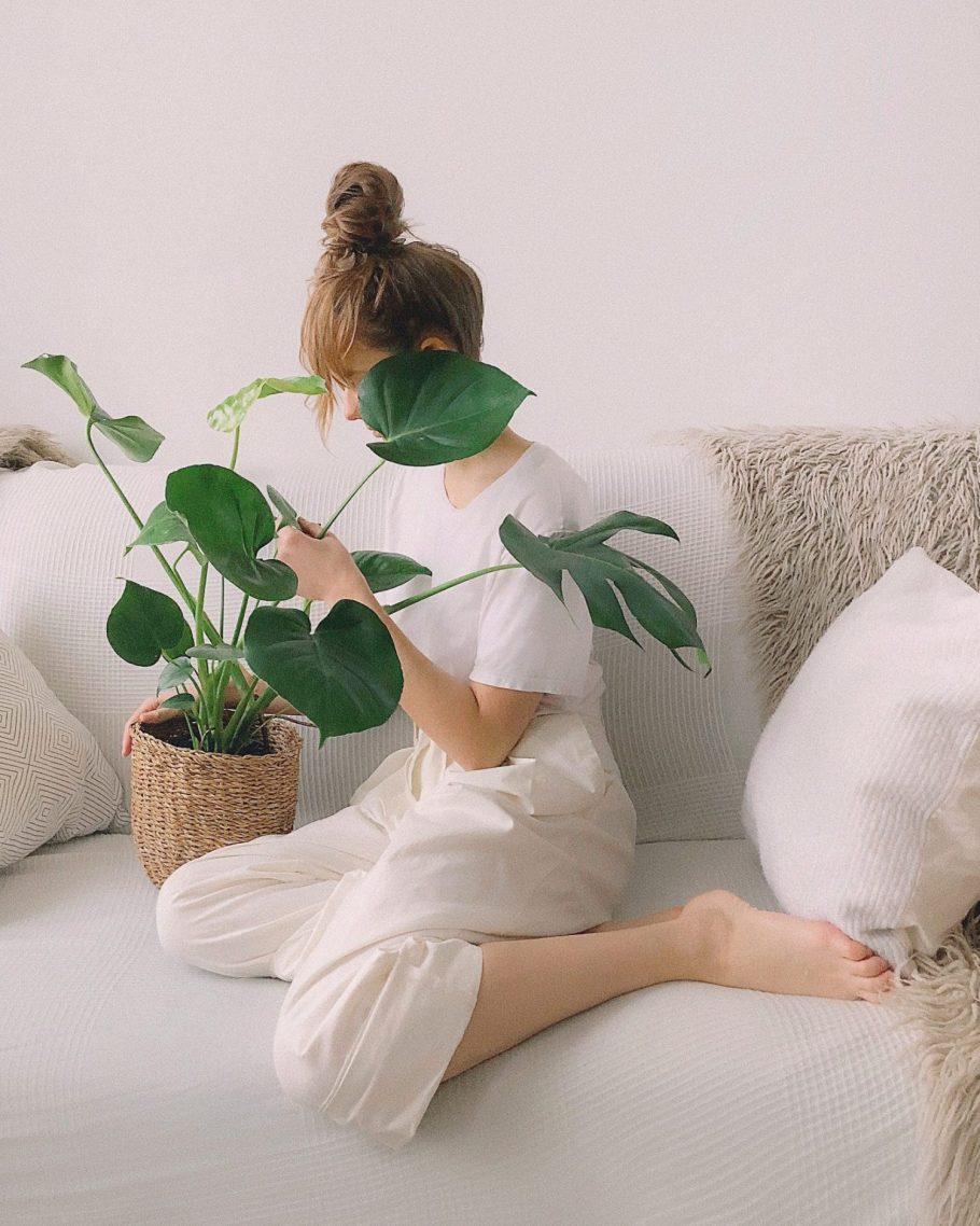 donica-dziewczyna Miejski busz - renesans roślin we wnętrzach