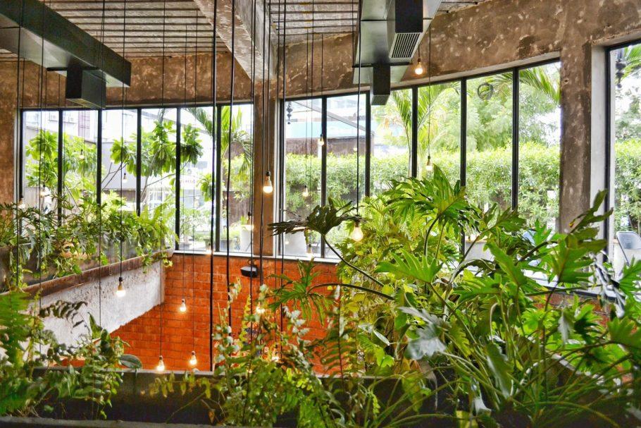 wnetrza-zielen Miejski busz - renesans roślin we wnętrzach