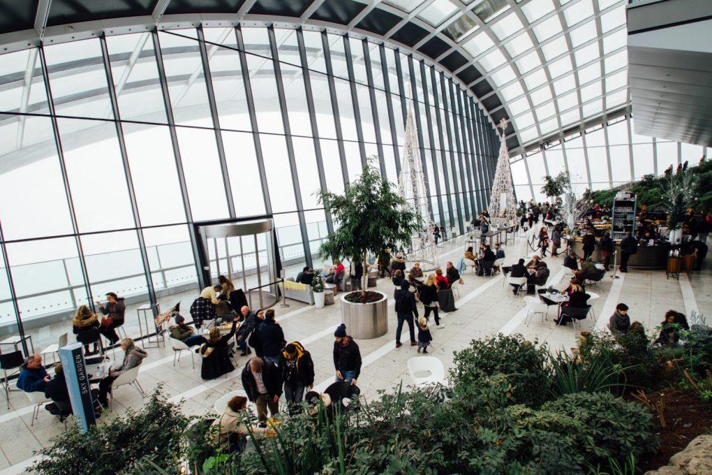 zielen-galeria-handlowa Miejski busz - renesans roślin wewnętrzach