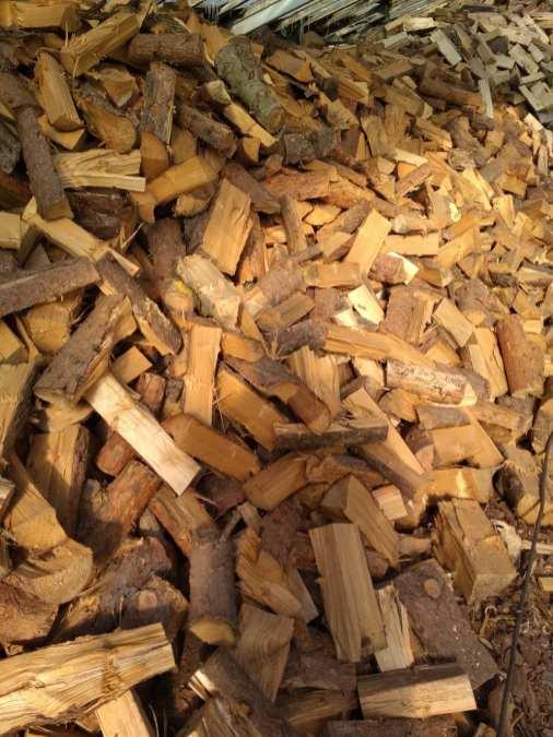 sosona Drewno opałowe w workach.