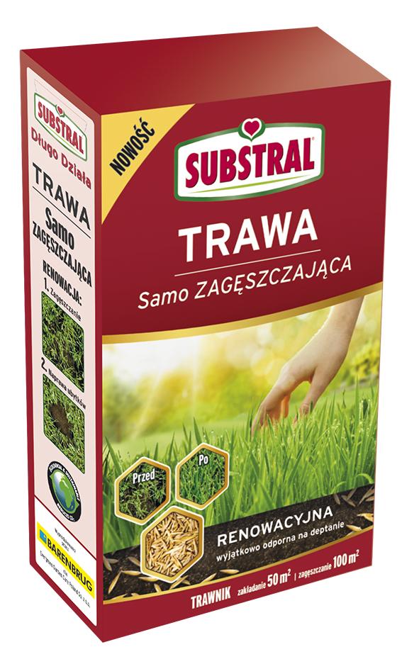 trawa-renowacyjna-1kg-1 Jak stworzyć gęsty trawnik?