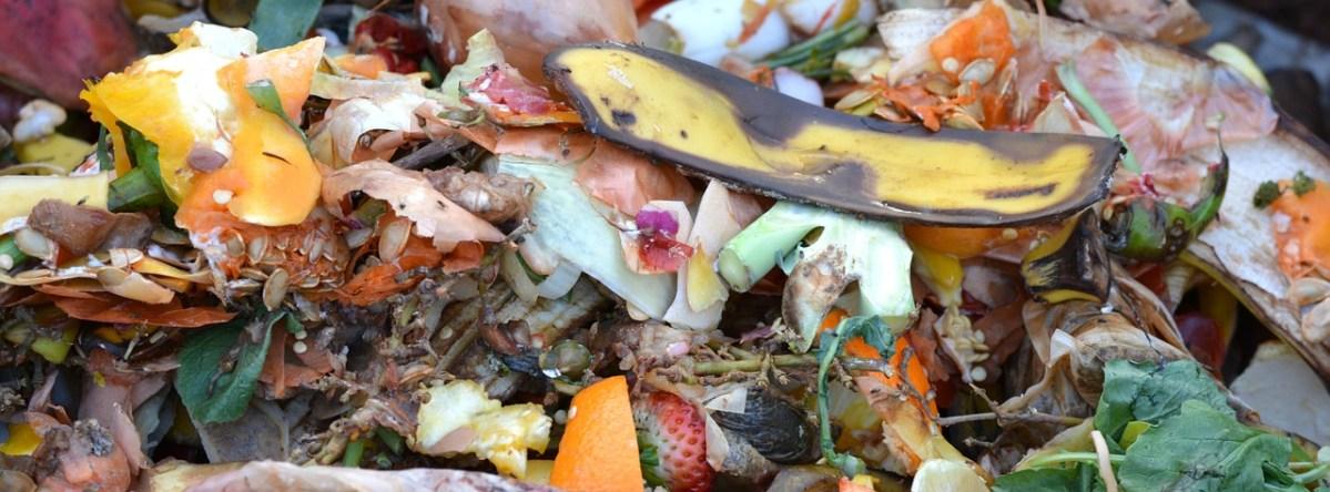 Kompost - nawóz z własnego ogrodu. Zielone Porady 14