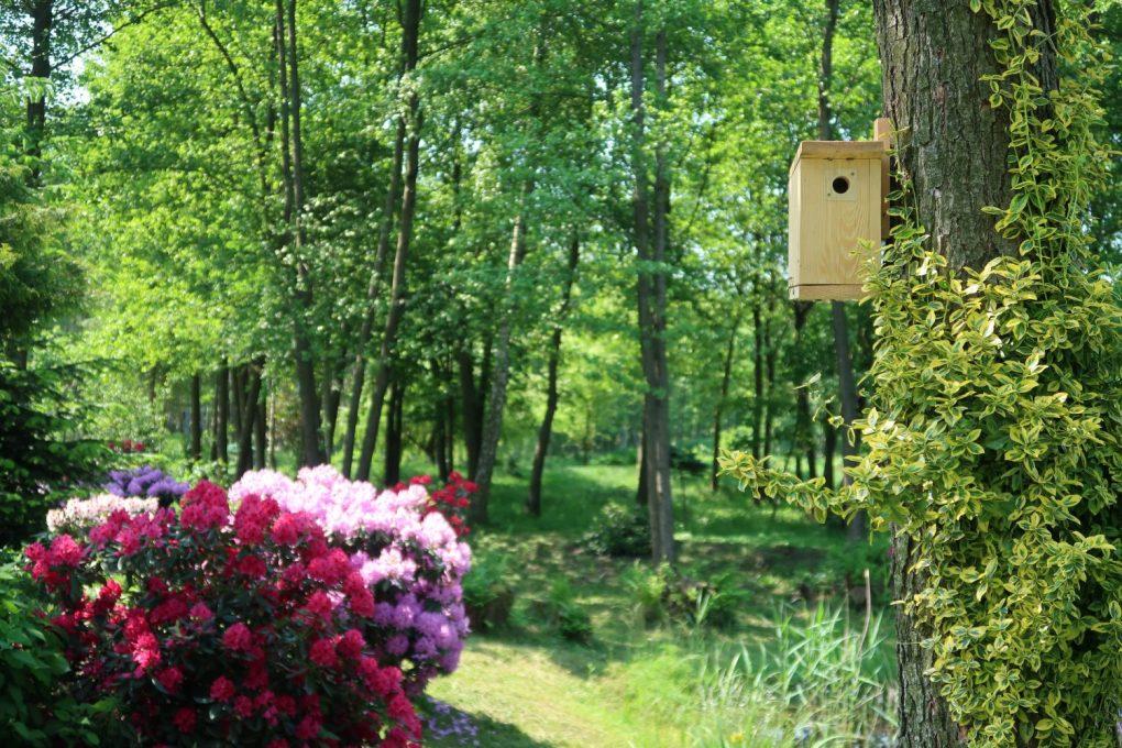 budka-dla-małych-ptaków-1024x683 Jak prawidłowo dokarmiać ptaki zimą