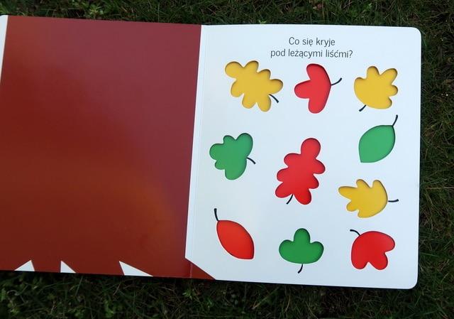 oto-jest-ogrod-ksiazka-2 Książki o ogrodzie dla dzieci - część 1