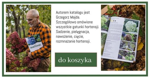 Katalog-Hortensje-1024x538 Jakie gatunki hortensji masz w ogrodzie