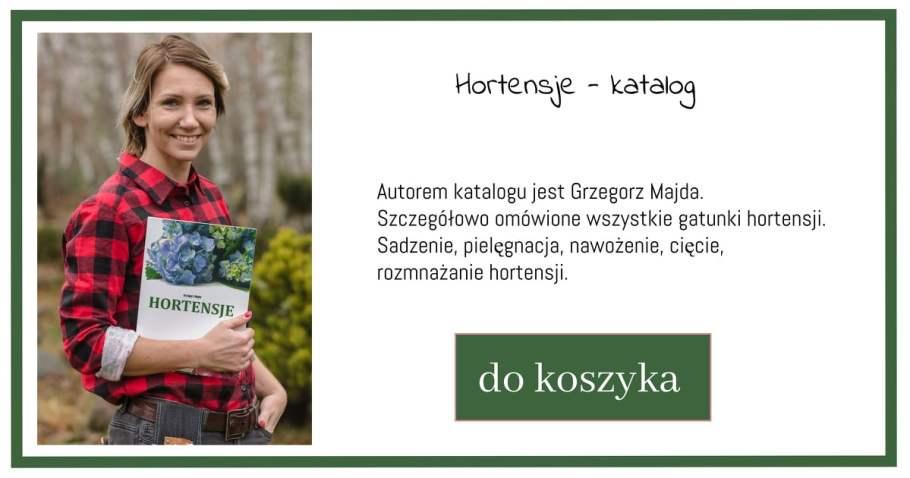 katalog-hortensje-1-1024x538 Odmiany hortensji