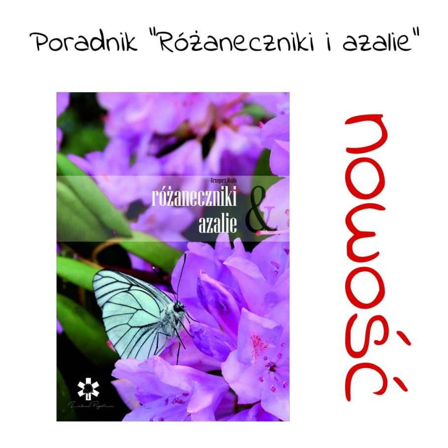 nowość-poradnik-różaneczniki-1024x1024 Rododendrony - najważniejsze zasady pielęgnacji. Zielone Porady 17