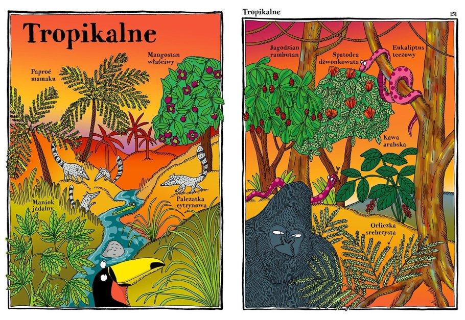 zwariowany-atlas-roślin2-1024x706 Książki o ogrodzie dla dzieci - część 5