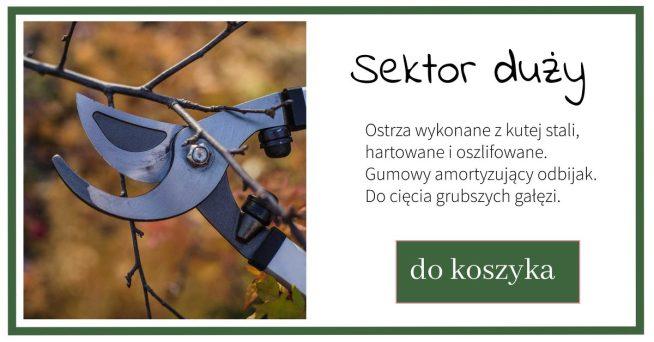 sekator_duzy-1024x538 Kiedy i jak ciąć drzewa i krzewy owocowe? Zielone Porady 4