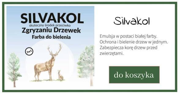 silvakol-1024x538 Kiedy bielić drzewa owocowe?