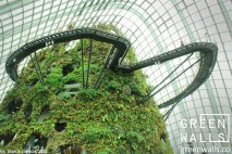 SINGAPUR - Gardens by the Bay