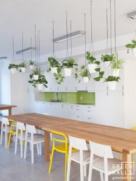 greenwalls_zielone_ściany_zieleń_we_wnętrzach_architektura_krajobrazu_aranżacje_zielenia_eko_zieleń_wnetrza6